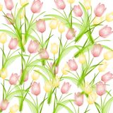 Pink Yellow Spring Tulips Background stock illustration