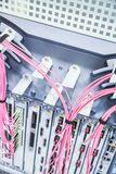 Pink Telecommunication Computer Wires and Cables for Data Transfer royalty free stock photography