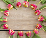 Pink and yellow tulips. Arranged in a circle on a wooden background Stock Images