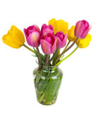 Pink and yellow  tulips bouquet Royalty Free Stock Photography