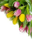 Pink and yellow tulips bouquet on white background isolated Stock Photo