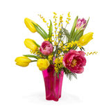 Pink and yellow tulips, mimosas Royalty Free Stock Photos