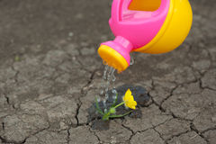 A pink yellow watering can water the ground. Drops of water spill, dissipate moisturize the earth. Help fight the drought. Stock Photo