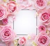 pinken för modellen för illustrationen för kortdesignen steg royaltyfria foton