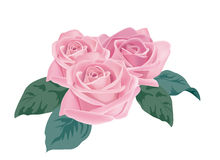 pinken steg Royaltyfria Bilder