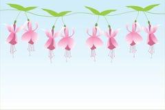 Pinkfarbene Reihe Stockfoto