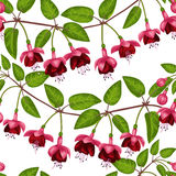 Pinkfarbenes nahtloses Muster Lizenzfreie Stockbilder