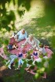 Pinkin na trawie Zdjęcie Stock
