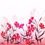 Pinks. Decorative floral background with red pinks pattern Royalty Free Stock Photos