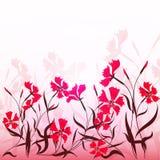 Pinks Royalty Free Stock Photos
