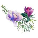 Pinks de Bloemen van Purples Bloemen botanische bloem Geïsoleerde boeketsamenstelling Waterverf achtergrondillustratiereeks vector illustratie