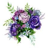 Pinks de Bloemen van Purples Bloemen botanische bloem Geïsoleerde boeketsamenstelling Waterverf achtergrondillustratiereeks stock illustratie