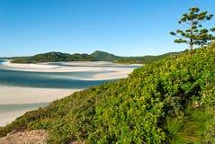 Pinkstereneilanden (Queensland Australië) Stock Fotografie