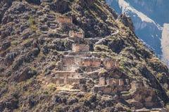 Pinkuylluna inka Storehouses ruiny blisko Ollantaytambo, Ollantaytambo -, Święta dolina, Peru obrazy royalty free
