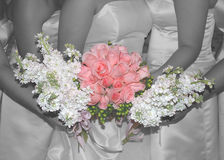 Pinkwedding roses. Black white with pink roses at wedding Stock Images