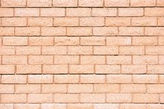 Pinky Brick Wall Backdrop Fotografia de Stock Royalty Free