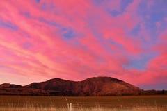 Pinky wieczór moczył w zmierzchów klimatach w Queenstown, Nowa Zelandia zdjęcie stock