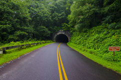 Pinnacle Bridge Tunnel Smoky Mountains Stock Photos