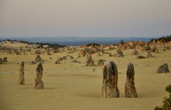 Pinnacle Desert Landscape at Dusk, Western Australia Stock Images
