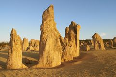 Pinnacle desert, Nambung NP, Western Australia Royalty Free Stock Photo