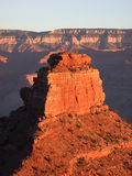 Pinnacle morning. Towering spire of the Grand Canyon Royalty Free Stock Photo