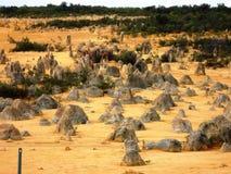 Pinnacle in Nambung national park Royalty Free Stock Photo