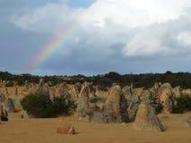 Pinnacle in Nambung national park Stock Photography
