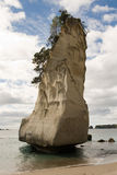 Pinnacle Rock. Cathedral Cove Stack, Coromandel, New Zealand Stock Images