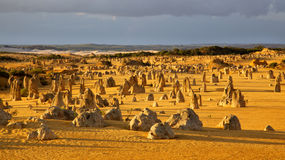 The Pinnacles. An overview of part of the Pinnacles Desert in the heart of the Nambung National Park, Western Australia Stock Photo