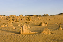 Pinnacles. The Pinnacles in West Australia Stock Photo