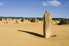 Pinnacles. The Pinnacles in West Australia Royalty Free Stock Photos