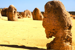 The Pinnacles - Australia. The Pinnacles in Western Australia Stock Images