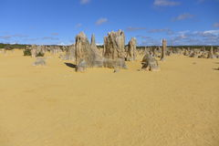 The pinnacles in Cervantes at Western Australia. Tamala limestone in Australia. They are mainly the fossil of tree Stock Photography