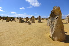 The pinnacles in Cervantes at Western Australia. Tamala limestone in Australia. They are mainly the fossil of tree Stock Images
