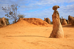 Pinnacles Desert. Natural limestone formations commonly known as the Pinnacles,Nambung National Park,Western Australia Stock Photos