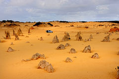 Pinnacles desert. In Western Australia royalty free stock images