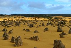 Pinnacles Desert, Australia Stock Images