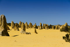 Pinnacles Desert Australia Royalty Free Stock Images