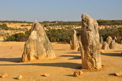Pinnacles Desert Landscape:Nambung National Park, Western Australia Stock Photography