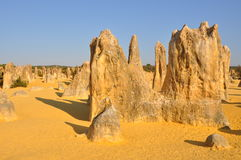 Pinnacles Desert Limestone Landscape: Western Australia Royalty Free Stock Images