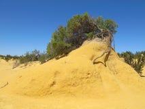 Pinnacles Desert, Nambung National Park, West Australia Royalty Free Stock Photos