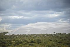 The Pinnacles Desert royalty free stock photos