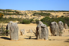Pinnacles Desert Royalty Free Stock Images
