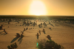 Pinnacles Desert under sunset Royalty Free Stock Photography