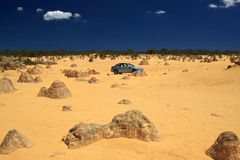 Pinnacles Desert,Western Australia. Car driving in the Pinnacles,Nambung National Park,Western Australia Stock Photos