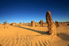 Pinnacles Desert,Western Australia Royalty Free Stock Images
