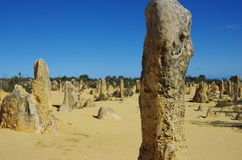 The pinnacles Stock Photography