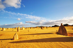 The Pinnacles Desert, Western Australia Stock Image