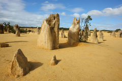 Pinnacles desert. The pinnacles desert in Western Australia Royalty Free Stock Images