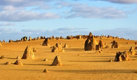 The Pinnacles Desert Western Australia. Pillars of limestone Pinnacles in The Pinnacles Desert, Western Australia Royalty Free Stock Images